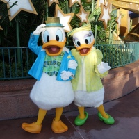 Donald Duck at Hollywood Studios