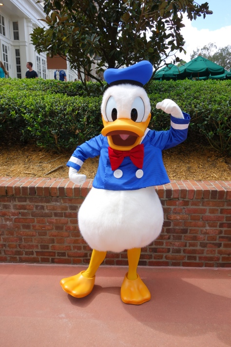 Donald EP 2012 (3)