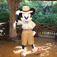 Character changes coming to Animal Kingdom - Mickey, Minnie, Donald, Daisy and Pooh too