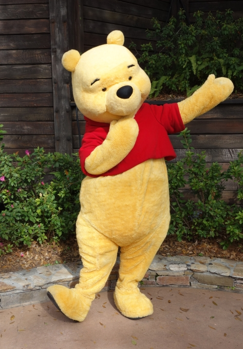 Winnie the Pooh Magic Kingdom 2013