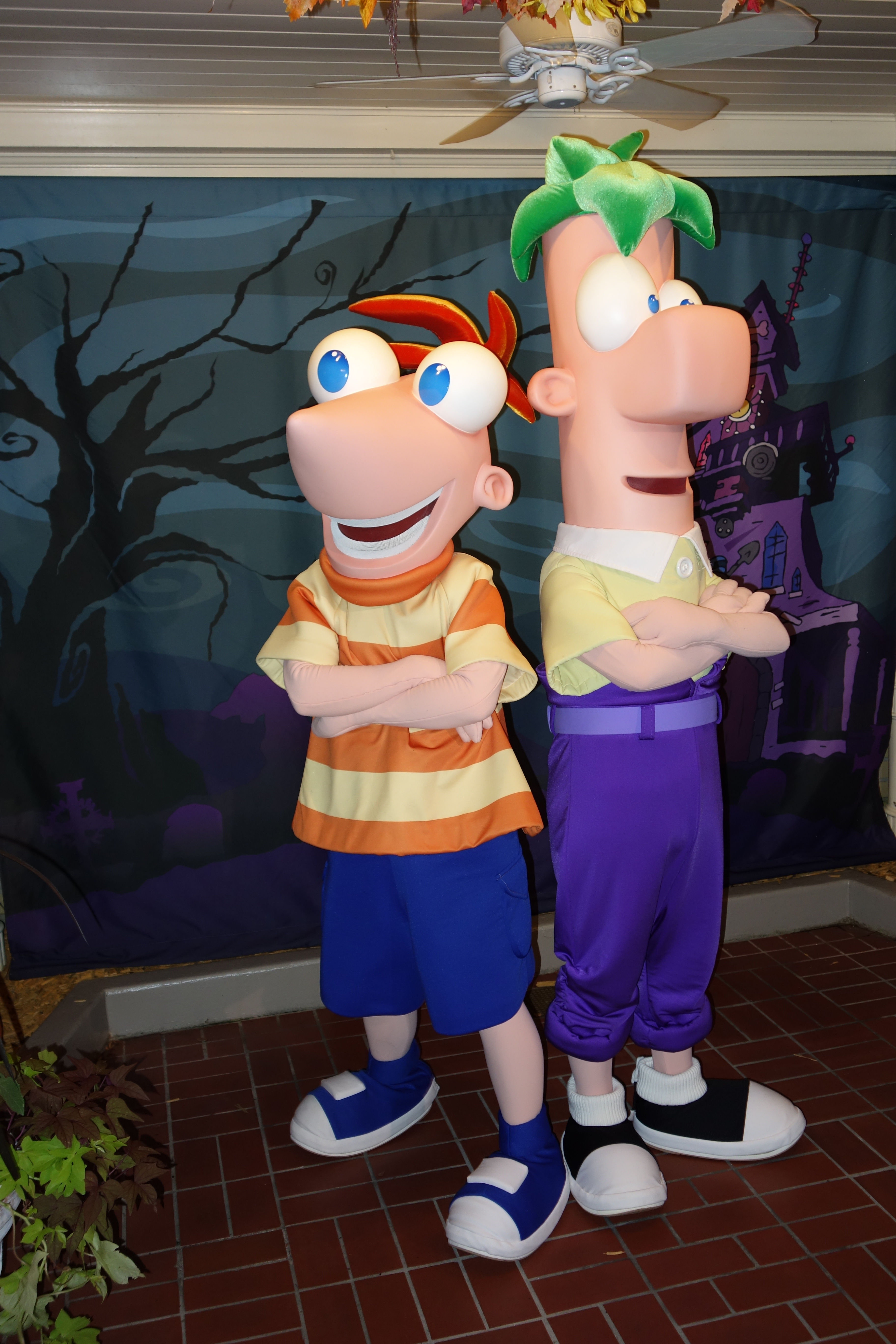 phineas and ferb – hollywood studios | kennythepirate's unofficial