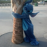 Stitch in Hollywood Studios
