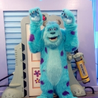 "James P. ""Sulley"" Sullivan - Hollywood Studios"