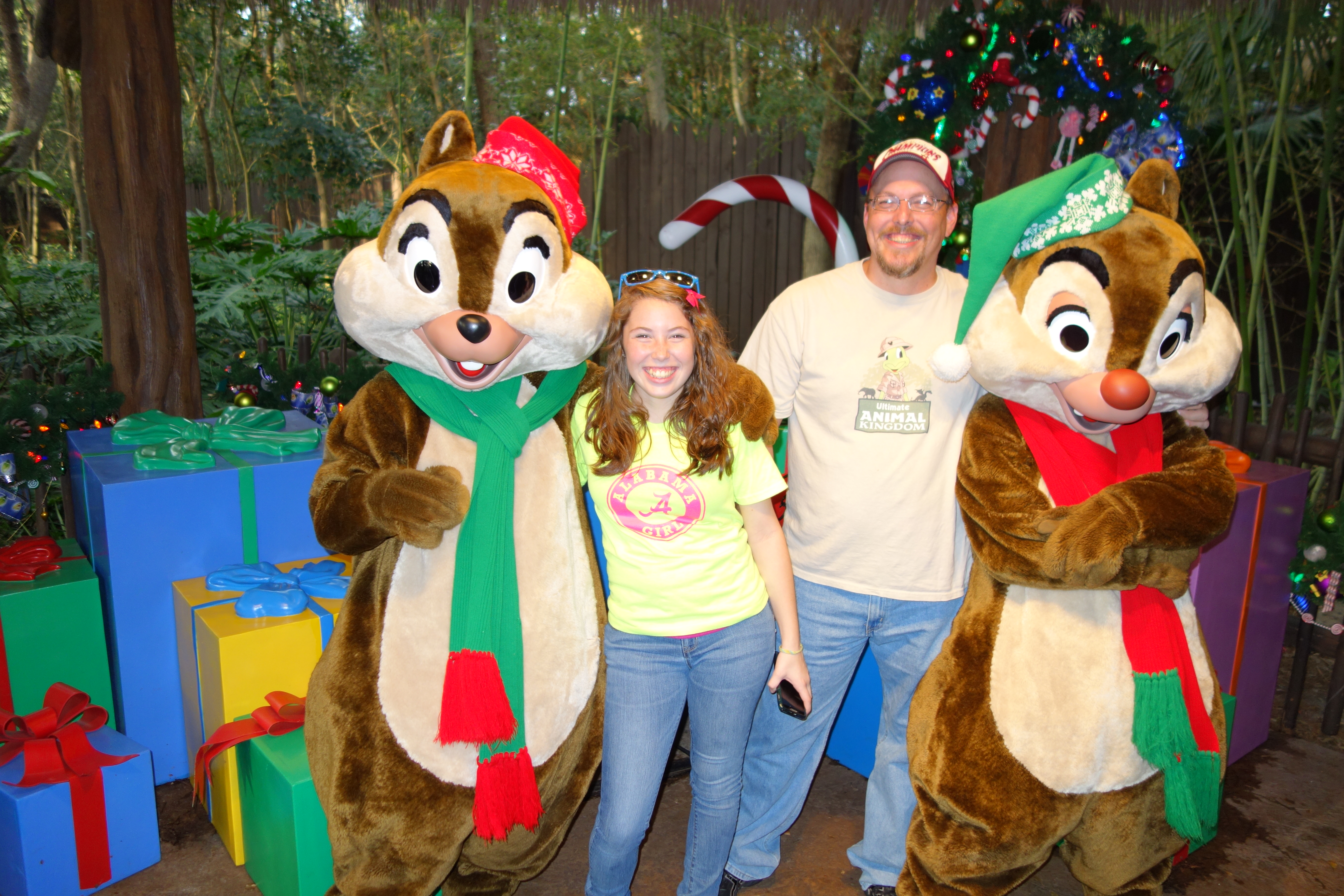 chip n dale kennythepirate u0027s unofficial guide to disney world