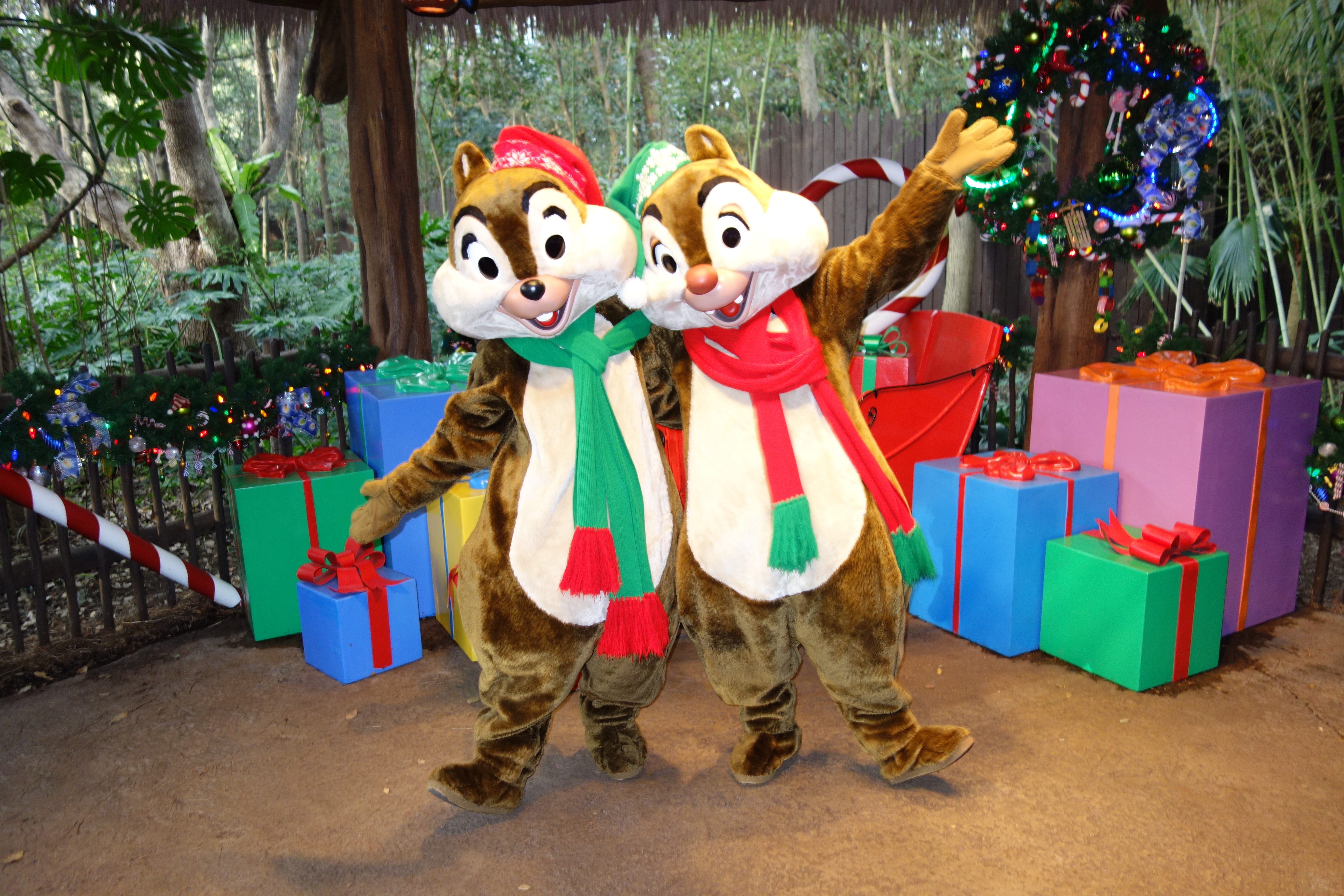 Chip N Dale Kennythepirate S Unofficial Guide To Disney World