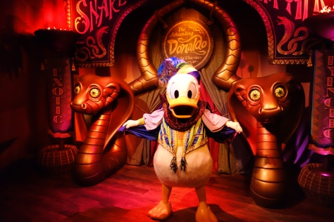 "Donald Duck as ""The Astounding Donaldo"" in Pete's Silly Circus during early previews fall 2012"