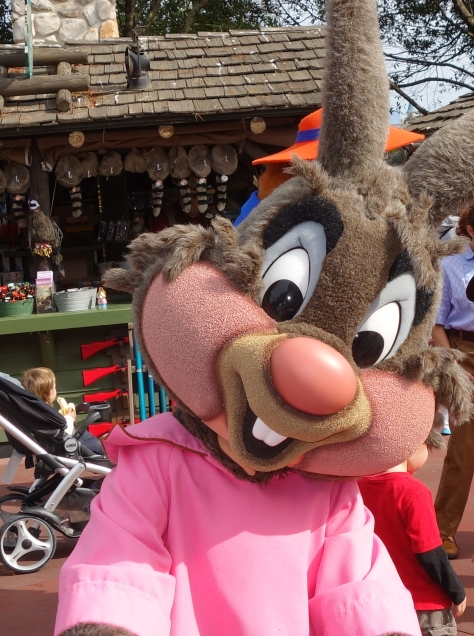 Brer Rabbit Jan 2013 (4)