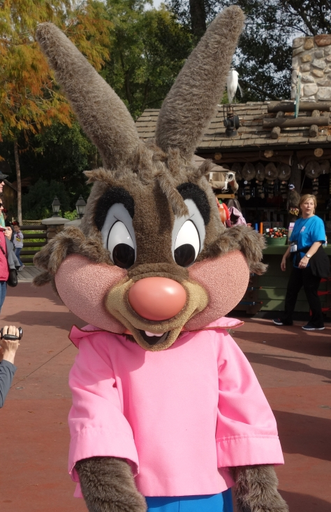 Brer Rabbit Jan 2013 (5)