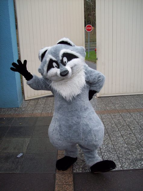 Meeko as he appears at Disneyland Paris