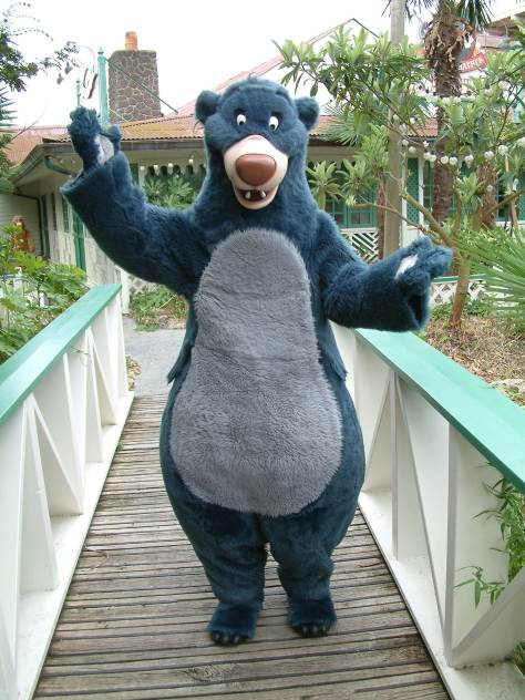 Baloo can be found most of the time in Adventureland.