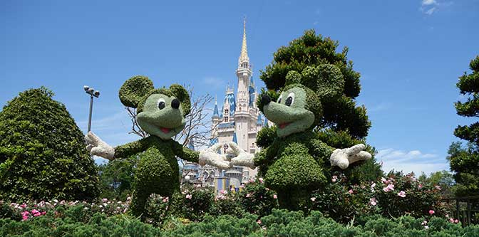 magic-kingdom-news