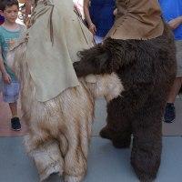 Chewbacca and Paploo the Ewok
