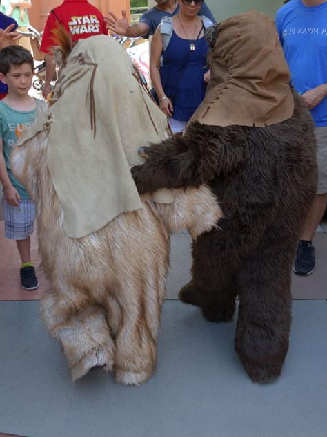 Paploo the Ewok and Wicket