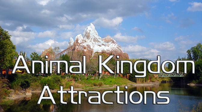 Animal Kingdom Attractions, Animal Kingdom Ride Descriptions KennythePirate
