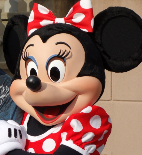 Minnie posing with some guy that I cruelly cut out of the photo.