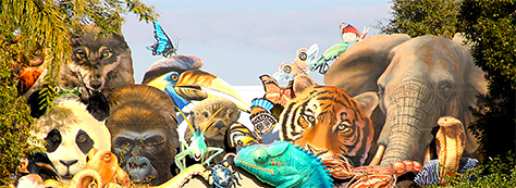 Walt Disney World, Animal Kingdom, Conservation Station, Rafiki's Planet Watch