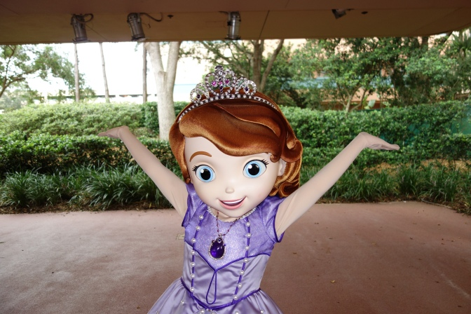 Sofia the First rain