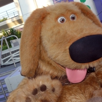 Limited Time Magic:  Dog Days of Summer at the Magic Kingdom.  Photos and Video