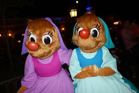 Mickey's Not So Scary Halloween Party 2013 (45)