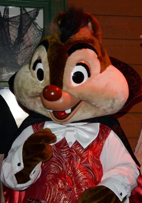 Walt Disney World, Character Meet and Greet, Halloween, Fort Wilderness Campfire, Vampire Chip