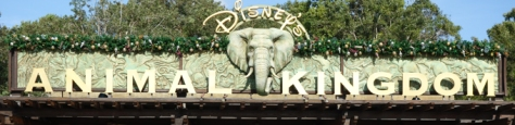 Walt Disney World, Animal Kingdom Entrance