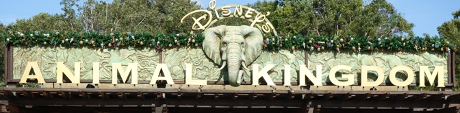 Disney's Animal Kingdom showtimes to adjust for the summer crowds