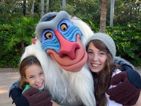 Walt Disney World, Animal Kingdom, Christmas 2013, Christmas Tree, Rafiki
