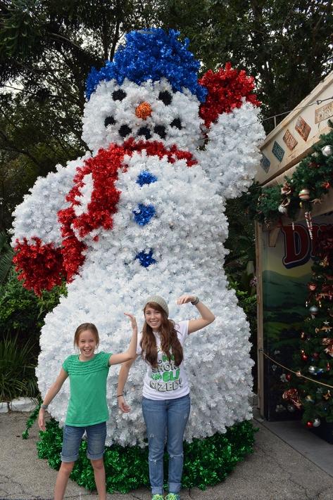 Walt Disney World, Animal Kingdom, Christmas 2013, Dinoland Snowman