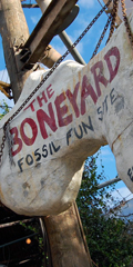 walt disney world, animal kingdom, the boneyard