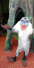 120-x-240-Rafiki-Animal-Kingdom