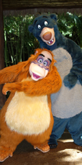 Walt Disney World, Animal Kingdom, Baloo and King Louie, Meet and Greet
