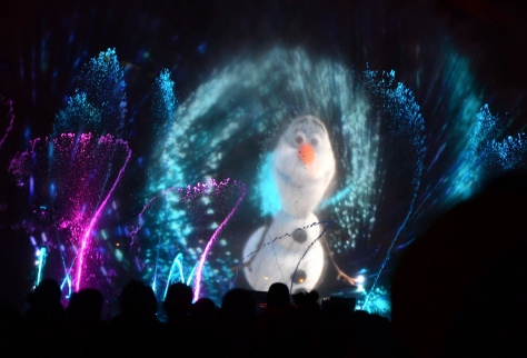 Disneyland World of Color Rich Muller (22)