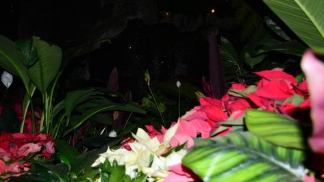Polynesian Resort Christmas Characters and Christmas Decor (20)