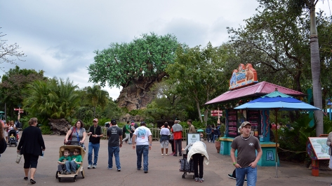 Walt Disney World Animal Kingdom Character Changes January 2014