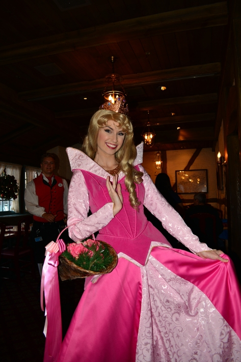 Walt Disney World, Epcot, Akershus Royal Banquet Hall, Princess Character Meal, Belle in Christmas Dress, Aurora, Briar Rose, Sleeping Beauty