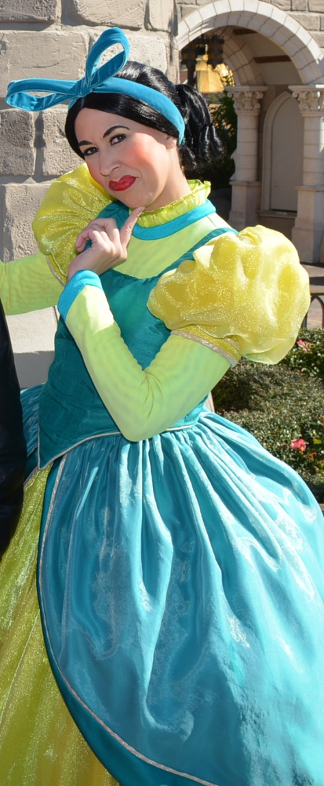 cinderella drizella costumes - photo #20