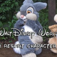 Easter resort character appearance schedules and resort recreation activities guides updated.