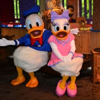 Daisy Duck and Donald Duck meet and greet at Animal Kingdom's Discovery Island details