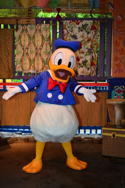 Donald Duck acting up at Animal Kingdom