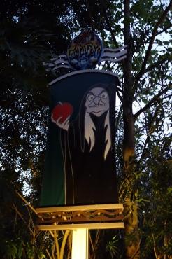 Fantasmic at Hollywood Studios in Disney World (3)