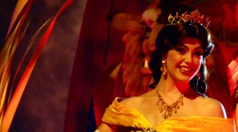 Fantasmic at Hollywood Studios in Walt Disney World August 2014 (12)