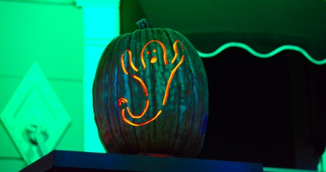 Mickey's Not So Scary Halloween Party 2014 (119)